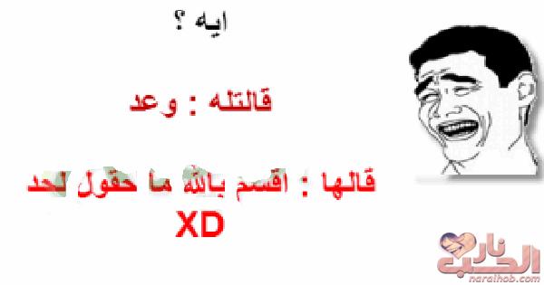 اقوى 5 نكت مصرية فى العالم